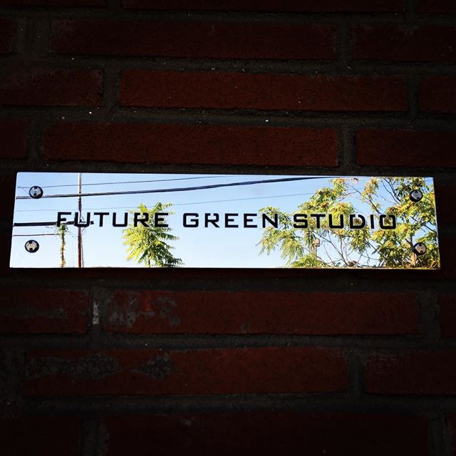 Been here for way to long this weekend #futuregreenstudio #spontaneousurbanplants #supailanthusaltissima